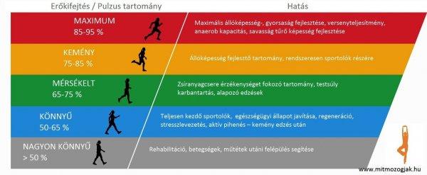 Hogyan számítható ki a maximális futási pulzusod?